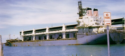 MV Cape Hawke